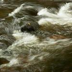 Teign water