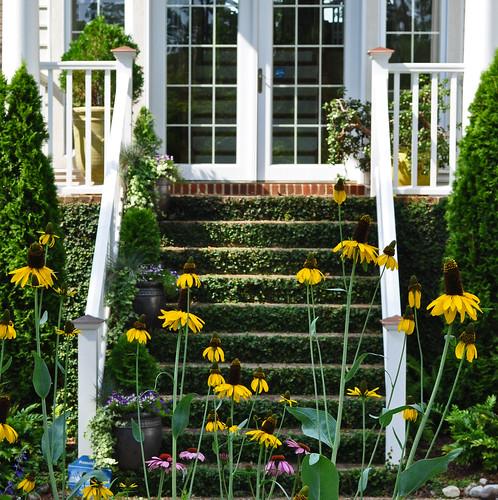 Eure Garden (2)