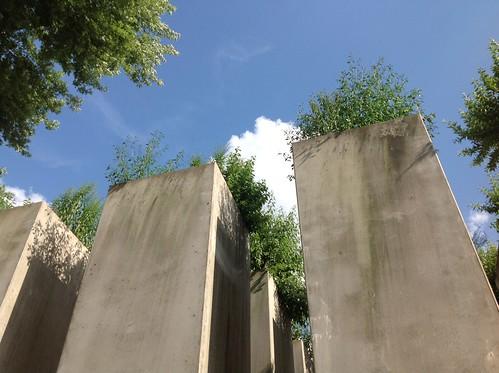 Berlino, museo ebraico, giardino dell'esilio