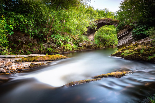bridge trees tree green river landscape scotland rocks day alba sony glen clear steine valley grün brücke fluss landschaft bäume baum tal livet schottland felsen a77 packhorsebridge glenlivet packhorse