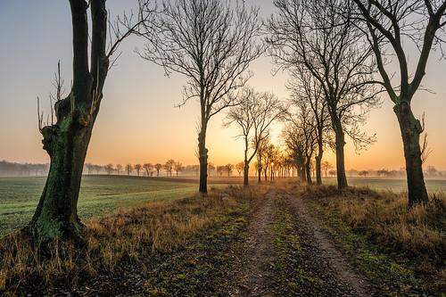 sunrise 35mm landscape nikon ngc poland greater 20mm nikkor fx nhc d700 2028d