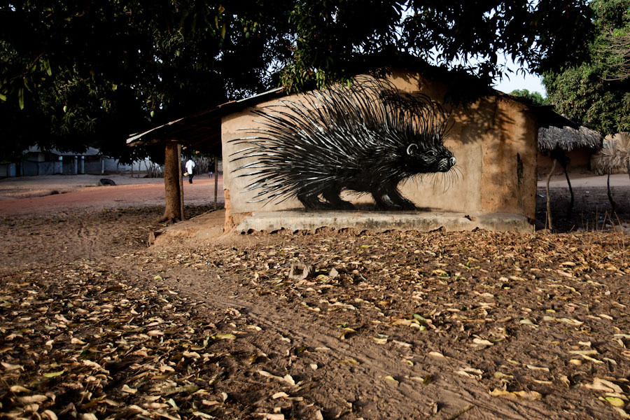 roa_street_art_gambia_9-Jonx-Pillemer