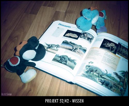 Projekt 52/42 - Wissen