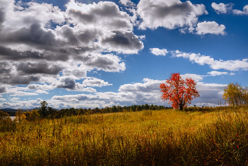 autumn trees sky fall field grass clouds landscape day newengland newhampshire sunny foliage laconia cliffordphotography robertallanclifford pwpartlycloudy cliffordphotographynhcom