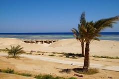 The Three Corners Fayrouz Plaza Beach Resort Marsa Alam