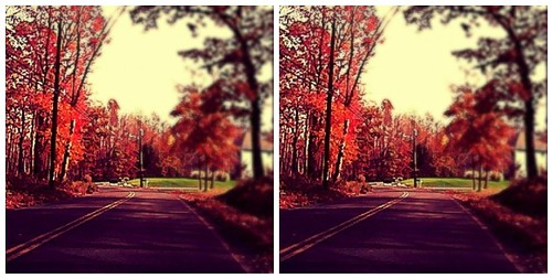 Autumn Road Trip Gave That