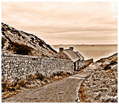 Road to Skomer, Pembrokeshire, Wales#orpheantwitch#wales#camera+ by davidearlgray