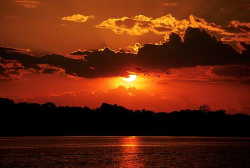 zimbabwe zambezi giorgioghezzi