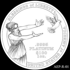2014 American Eagle Platinum design AEP_R_01