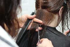 hairstyle, brown, hairdresser, hair, ear, fashion, long hair, brown hair, close-up, beauty, interaction,