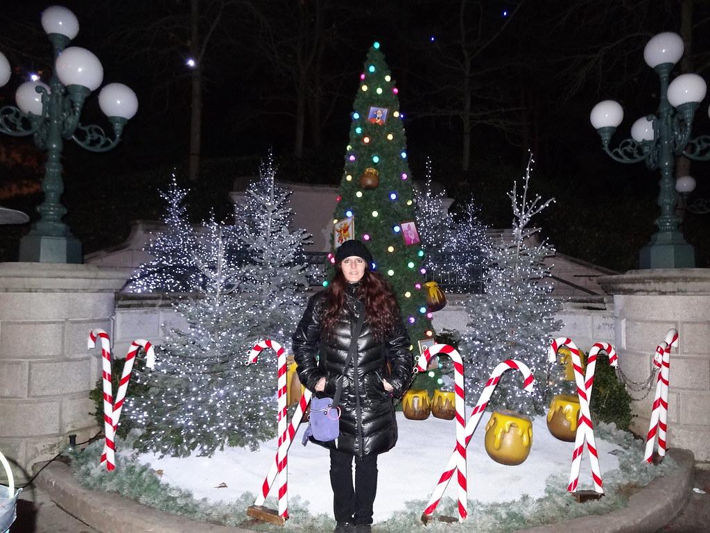 Un séjour pour la Noël à Disneyland et au Royaume d'Arendelle.... - Page 5 13717141583_f65d87caba_b