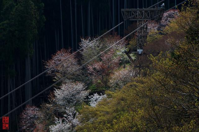 「ロープウェイ」 吉野山 - 奈良