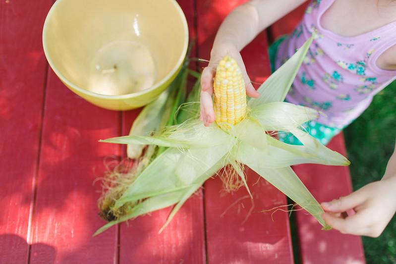 corn-10