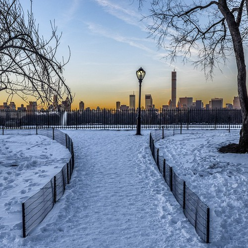 New York Narnia dawn