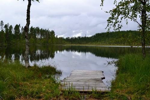 summer lake nature finland geotagged august fin ph virrat 2011 pirkanmaa 201108 20110810 saukkolampi geo:lat=6223857200 geo:lon=2416588800