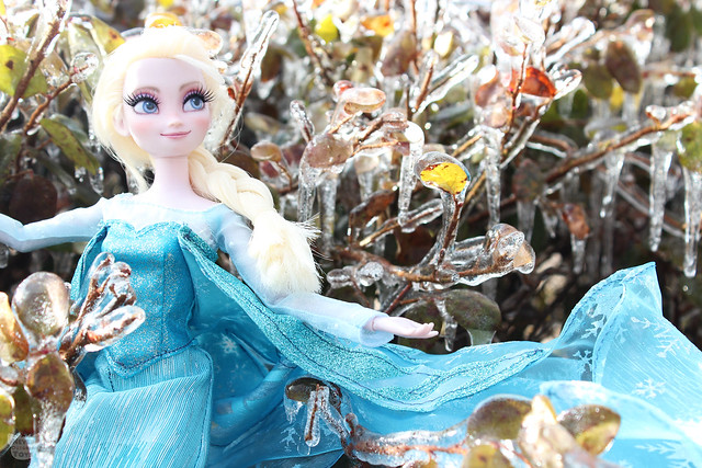 frozen autumn copy