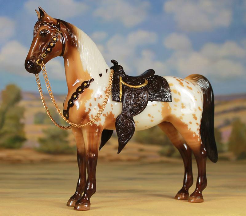 Pocono Ponies Live in Palmerton PA (Region 9)  16386128919_1dbb8b7325_b