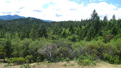 Cathedral Hills Trail System