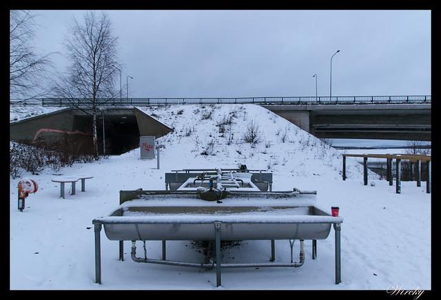 Laponia Rovaniemi iglú cristal cena salmón kota - Lavadero