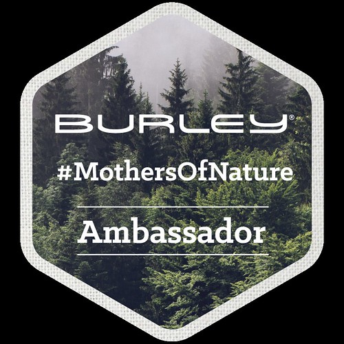 Burley Ambassador Badge