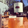 Perfect day for an IPA!