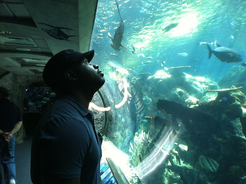 Sean checks out the marine life