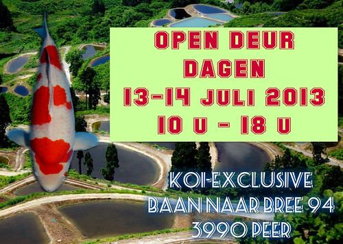 pizap.com13730309596981 open deur dagen 13-14 July 2013