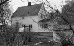 Lindegård på Lade (1983)