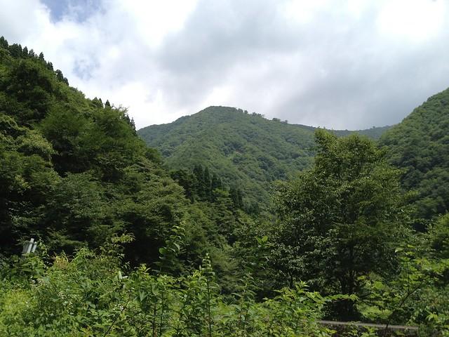 林道より前山
