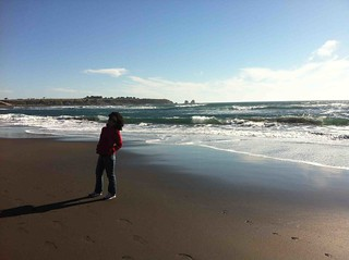 Image of Playa Hermosa. fotosenstreaming