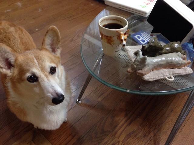 KOGI コーヒータイム♪