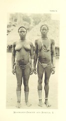 """British Library digitised image from page 287 of """"Im afrikanischen Urwald. Meine Reise nach dem Kongo und der Mongalla im Jahre 1896 ... Mit ... 87 Lichtdrucktafeln und 3 Karten"""""""