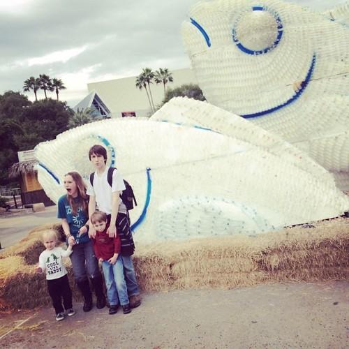 Bottle Fish Sculpture #moodygardens #mgmediatour13