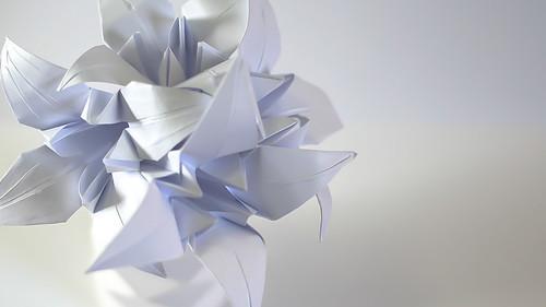 ดอกลิลลี่กับแจกันสีขาว 004