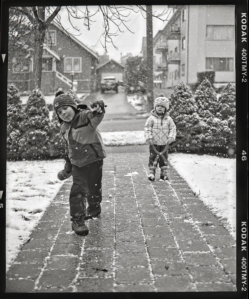 February Snow 2014 1.jpg