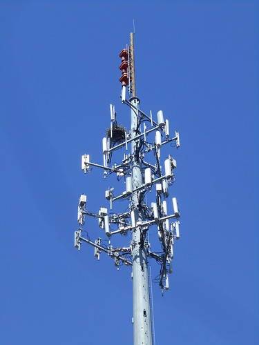 cell tower nest
