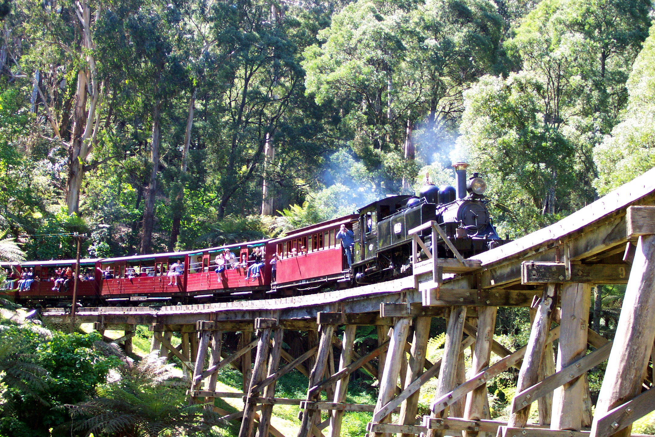 Ride through the forest from Belgrave on Puffing Billy steam train - an original steam locomotive
