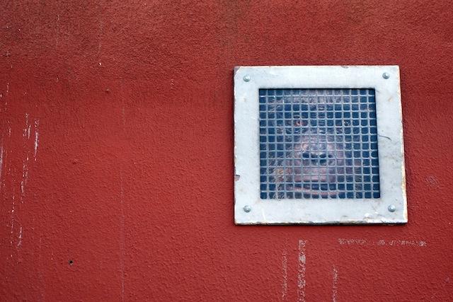 Brooklyn street art The Bushwick Collective gorilla
