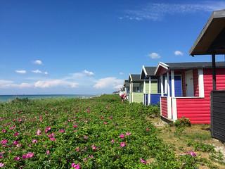 Image of Skanörs norra revel nakenbad. beach nature strand se skåne sweden outdoor sverige skanör skånelän