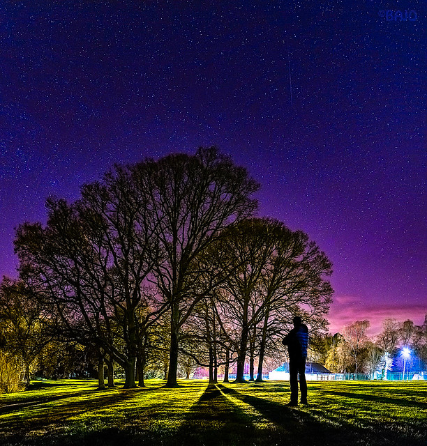 Below the starry night