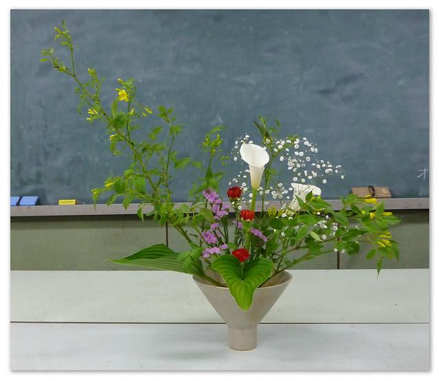 【盛花】ソケイ、キボシ、カラー【2013_05_11】