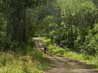Ten Mile Road