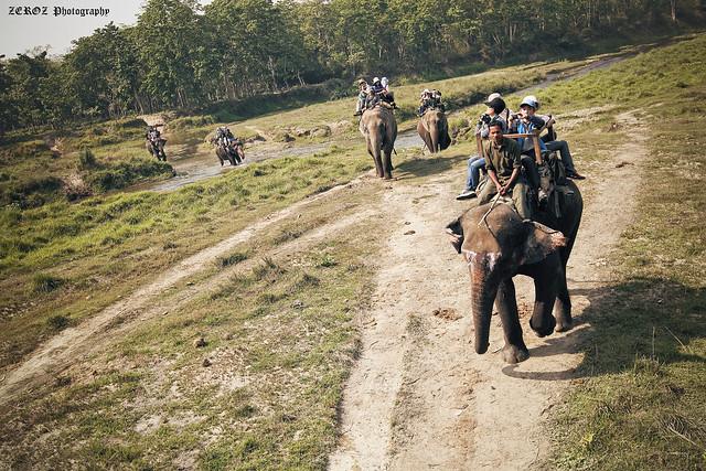 尼泊爾•印象0006-6-3 (3).jpg