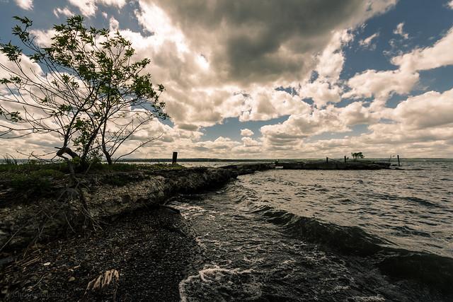 Port After Stormy Seas | Willard