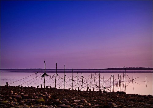 Stake Nets at Sunset by Novantae