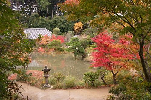【写真】紅葉 : 浄瑠璃寺