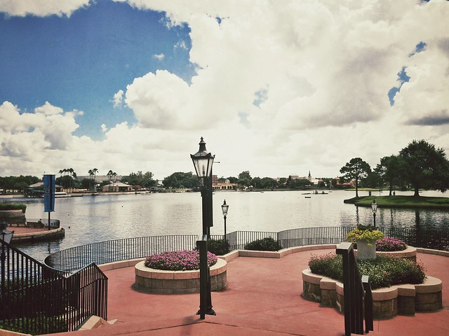 Epcot Views