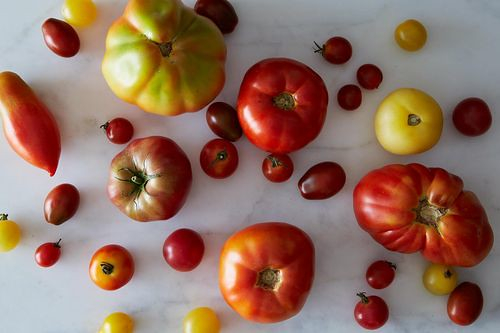 Tomatoes on Food52