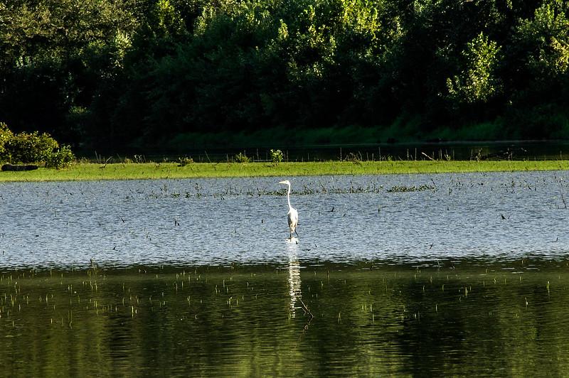 T.C. Steele State Historic Site - Lake Monroe - Crooked Creek - September 2, 2013
