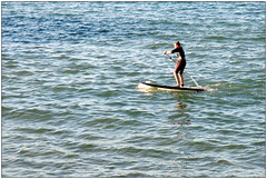 surface water sports, sports, sea, surfing, wind wave, wave, water sport, stand up paddle surfing, surfboard, paddle,